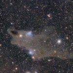 ケフェウス座シャーク星雲(LDN1235)付近