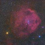 エンゼルフィッシュ星雲