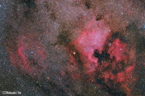 RedCat51で北アメリカ星雲とSh2-119