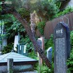 ※鎌倉の「星月夜」と「星月の井」